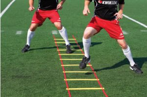 ankle sprain rehabilitation and prevention, agility training